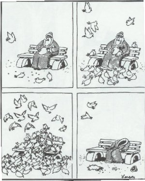 Birds in The Farside